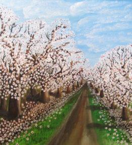 Almond Lane